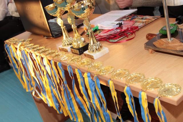 6-Житомир-2018 Патріотичний формат Відкритого чемпіонату Житомирщини6 ZHitomir 2018 e1516716767467 -